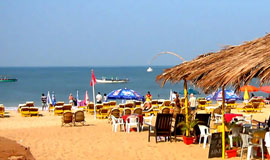 Summer Offers - GOA